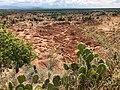 Desierto de la Tatacoa (31138980587).jpg