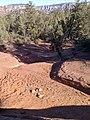 Devil's Bridge Trail, Sedona, Arizona - panoramio (46).jpg