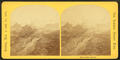 Devonshire Street, from Robert N. Dennis collection of stereoscopic views 8.png