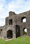 Dinefwr Castle 6 (35444859931).jpg
