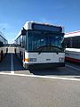 Disney Bus Number 5063-11 (31549317271).jpg