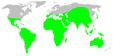 Distribution.hersiliidae.1.png