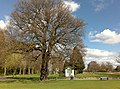 Disused Ticket Office and Oak Tree - geograph.org.uk - 1235719.jpg