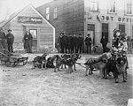 Dog sled team in front of Nowell Studio and Post Office, Nome, Alaska, between 1900 and 1910 (AL+CA 7520).jpg