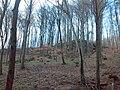 Dolina Racławki - panoramio (1).jpg