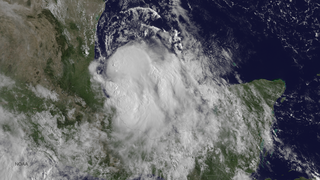 Tropical Storm Dolly (2014)
