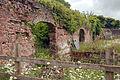 Double Walled Garden @ National Botanic Garden Of Wales (3706132107).jpg