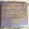 Stolperstein für Dr. Theodor Tuch