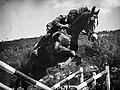 Dragoner Schweizer Kavallerie 1960er Jahre.jpg