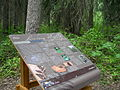 Driftwood Canyon interpretive sign June 2010.JPG