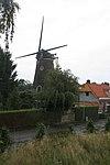 foto van Hertogin van Brabant