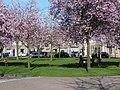 Dudokhof - panoramio.jpg