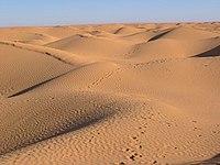 Dune, Grand erg près de Ksar Ghilane, Tunisien, 2004.jpg
