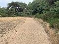 Dunes Charmes Sermoyer 28.jpg