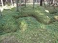 Dusetų sen., Lithuania - panoramio (116).jpg