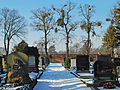 EVA Friedhof2200.jpg