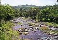E rio siguacan de santa barbara suchitepequez - panoramio.jpg