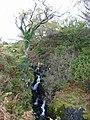 Easan Dubh - geograph.org.uk - 1031505.jpg