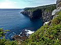 East Coast Trail (29097327857).jpg