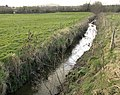 East Hams Lane, minor tributary of R. Parrett - geograph.org.uk - 680681.jpg