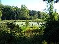 Eden Prairie wild - panoramio.jpg