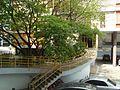 Edifício Louveira 15.jpg