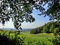 Emtmannsberg vom Herrnwald - panoramio.jpg