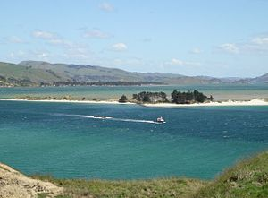 Otago Harbour - The entrance to Otago Harbour from Taiaroa Head