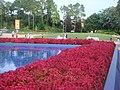 Epcot jardin - panoramio.jpg