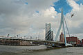 Erasmus bridge (4387781215).jpg