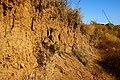 Erosion - panoramio (1).jpg
