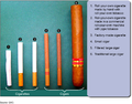 Examples of Cigarette and Cigar Products.png