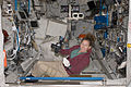 Expedition 18 flight engineer Sandra Magnus works in the Columbus laboratory.jpg