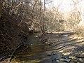 Fall Run Park in Shaler Township, late winter - 39.jpeg