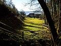 Farm - panoramio (5).jpg