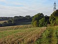 Farmland, Basildon - geograph.org.uk - 1558771.jpg