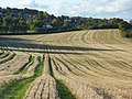 Farmland, Bledlow Ridge - geograph.org.uk - 1024263.jpg