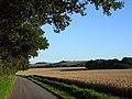Farmland and road, West Woodhay - geograph.org.uk - 1561802.jpg