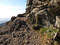 Faulted contact on Causey Pike.JPG