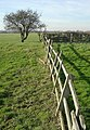 Fence and fields - geograph.org.uk - 687408.jpg