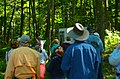 Field Trip in the Forest - Flickr - wackybadger (4).jpg