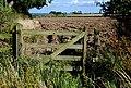 Field near Sturton Grange - geograph.org.uk - 527823.jpg