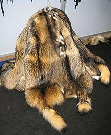 Finnraccoon fur skins.jpg