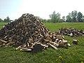 Firewood in Plescicy.jpg