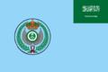 Flag of the Royal Saudi Air Force.png