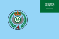 Flag of the Royal Saudi Air Force.png