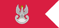 Flaga Sił Lądowych.PNG