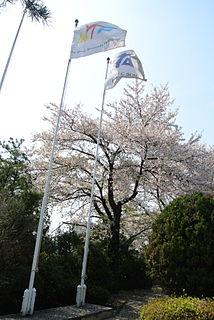 World Taekwondo international sport governing body