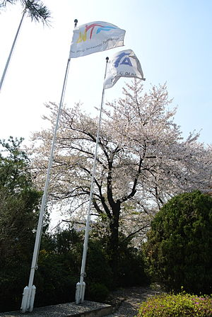 Kukkiwon - Flagpoles and flags of the World Taekwondo Federation (now World Taekwondo) and of the Korean Taekwondo Association at the Kukkiwon