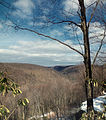 Flickr - Nicholas T - Paige Run Gorge (Revisited) (2).jpg